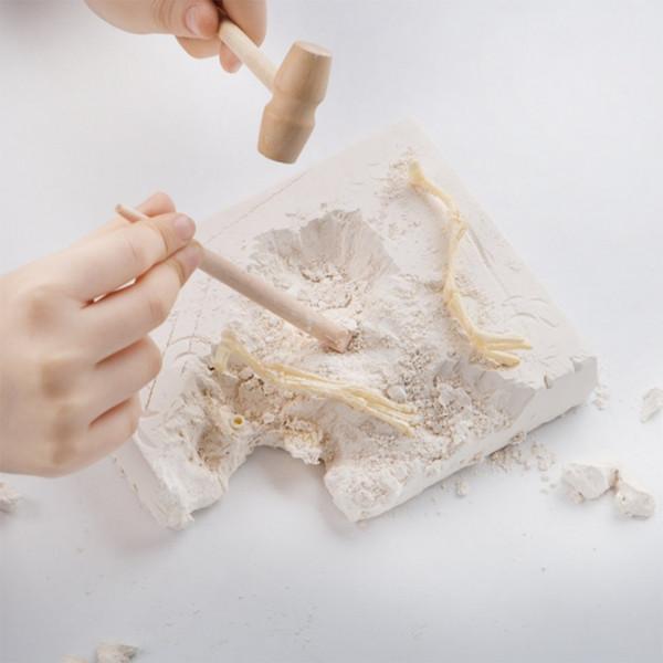 Розкопки динозавра набір з інструментами